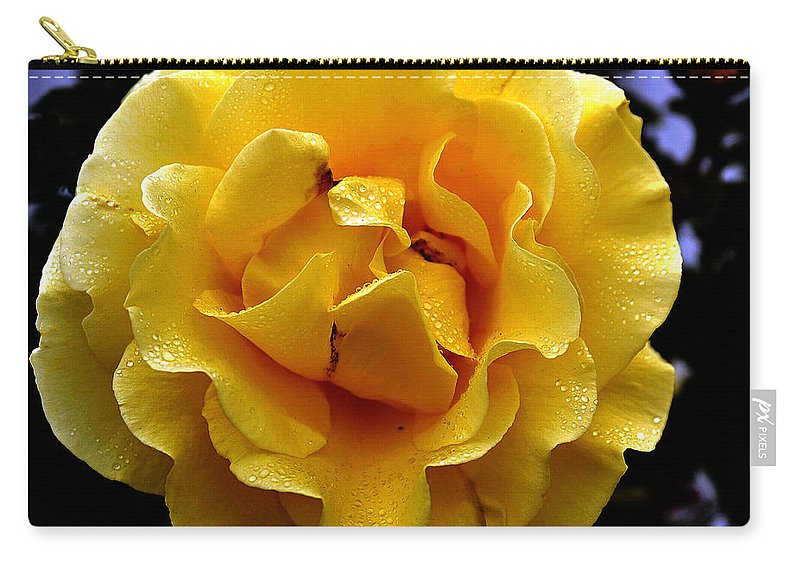 Clay Carry-all Pouch featuring the photograph Wet Yellow Rose by Clayton Bruster