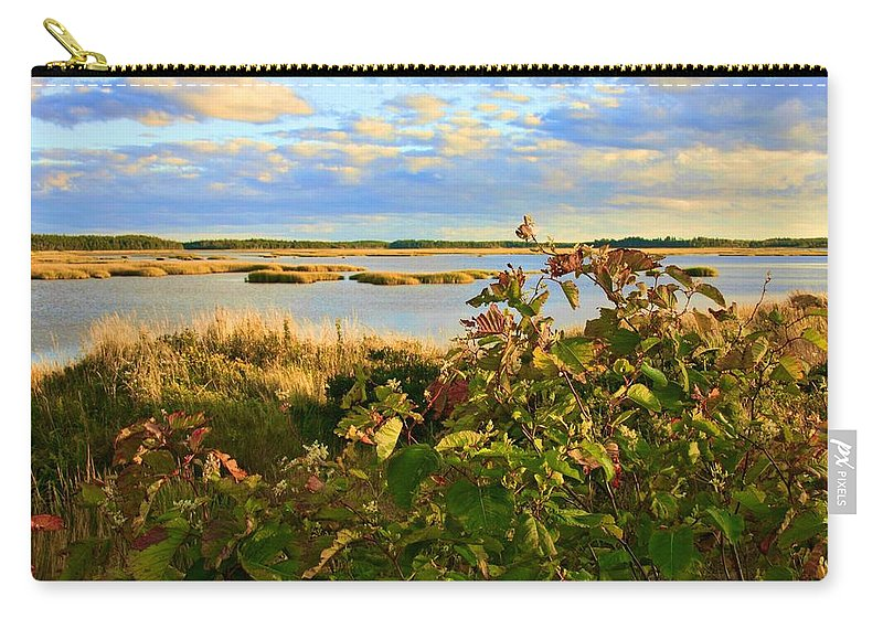 Wetlands Carry-all Pouch featuring the photograph Wetlands In Cape Breton by Tatiana Travelways