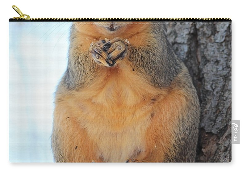 Squirrel Carry-all Pouch featuring the photograph What Do You Want by Lori Tordsen