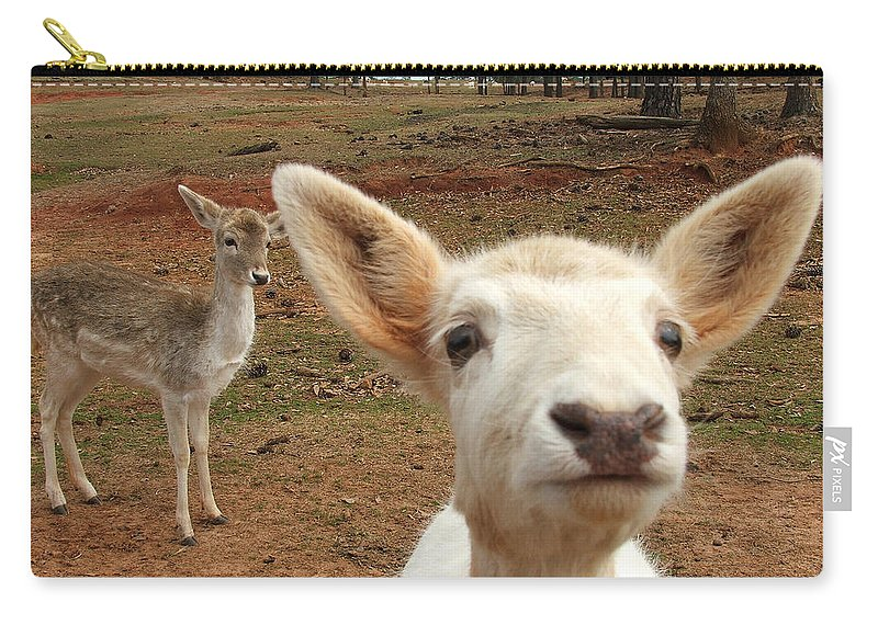 Deer Carry-all Pouch featuring the photograph What Is That by Robert Meanor