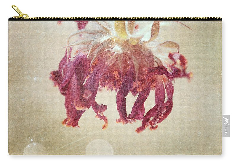 Flower Carry-all Pouch featuring the photograph What's Left Of Summer 2009 by Aimelle