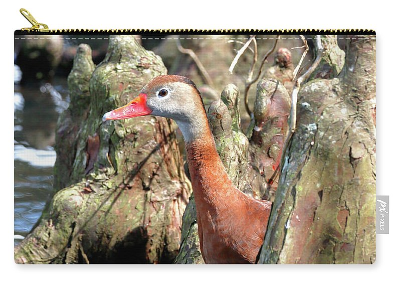What's Carry-all Pouch featuring the photograph What's Up? by Nicholas Blackwell
