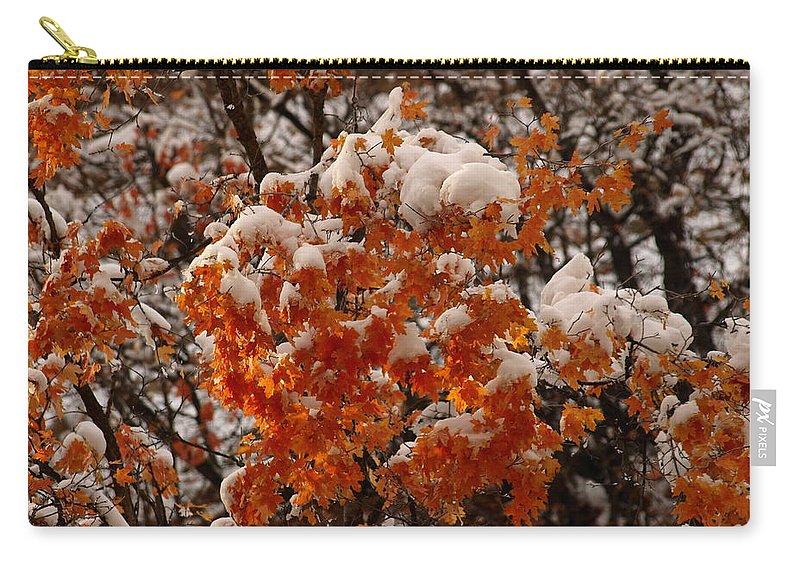 Fall Carry-all Pouch featuring the photograph When Fall Meets Winter by DeeLon Merritt