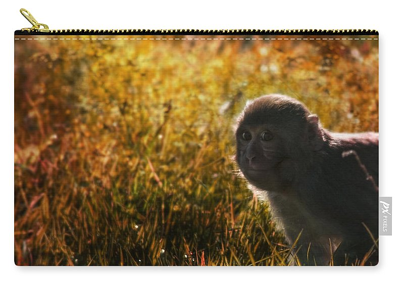 Monkey Carry-all Pouch featuring the photograph Where Are You My Precious by Angel Tarantella