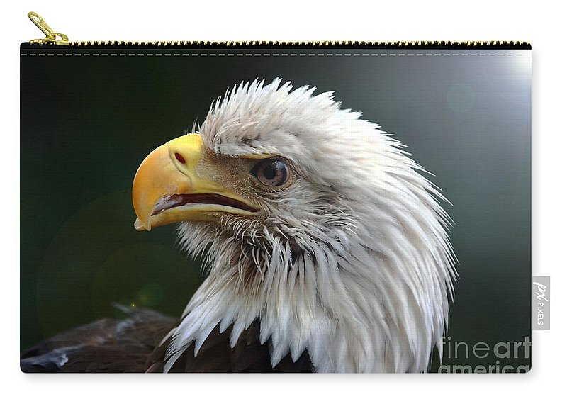 Bird Carry-all Pouch featuring the photograph Where Eagles Dare 3 by Randy Matthews