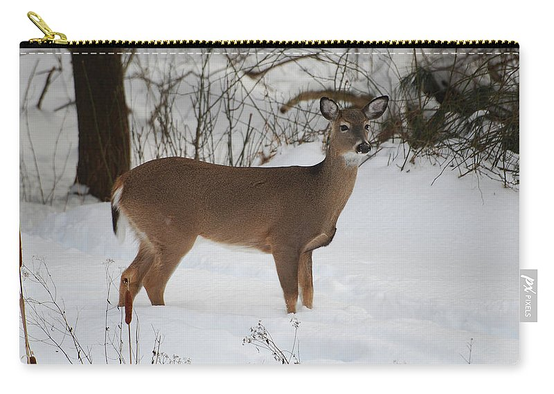 Deer Carry-all Pouch featuring the photograph Where Is Everybody by Lori Tambakis
