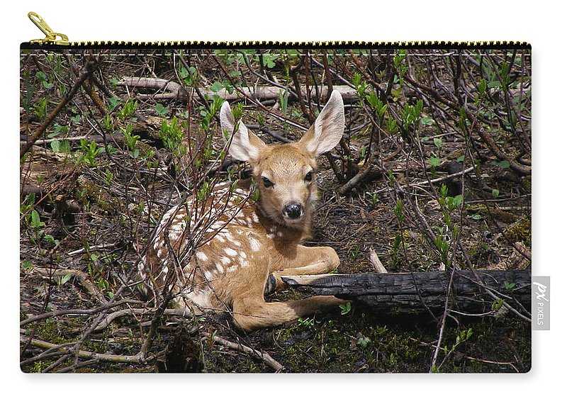 Deer Carry-all Pouch featuring the photograph Where Mother Said Stay by DeeLon Merritt