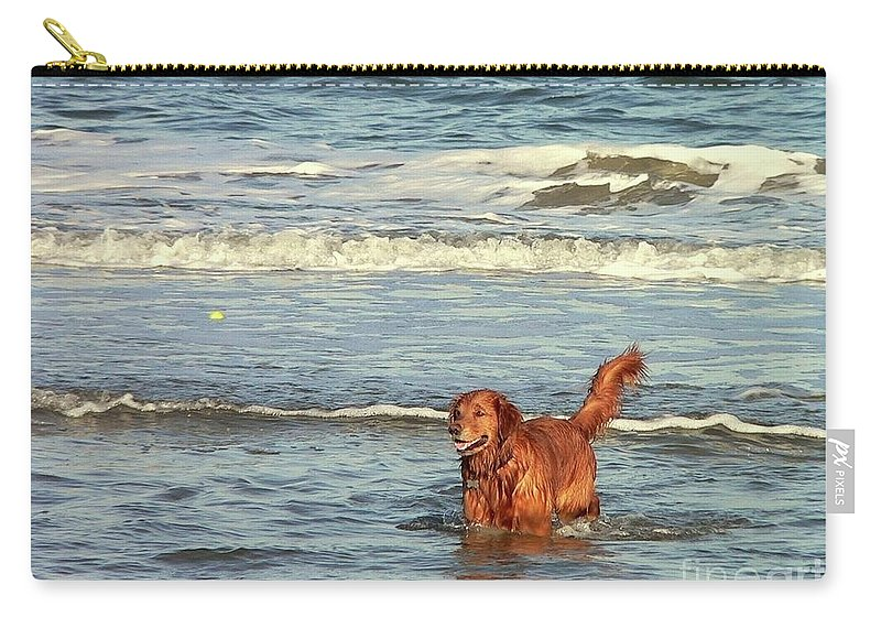 Pet Carry-all Pouch featuring the photograph Where's The Ball by Al Powell Photography USA