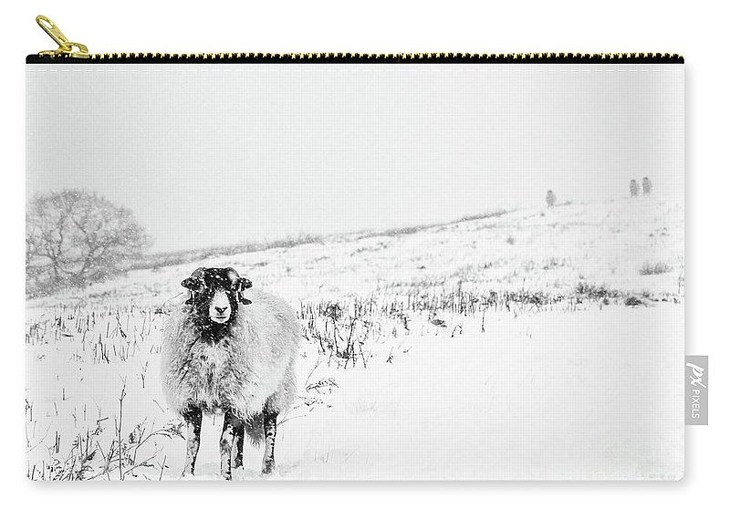 Swaledale Carry-all Pouch featuring the photograph Which Way Is South? by Janet Burdon