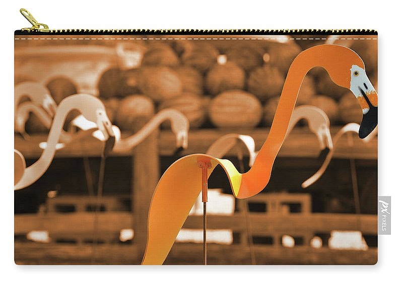 Silly Carry-all Pouch featuring the photograph Whimsy In Orange by JAMART Photography