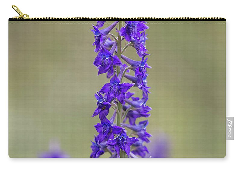 Crested Butte Carry-all Pouch featuring the photograph Whipple's Penstemon by Meagan Watson