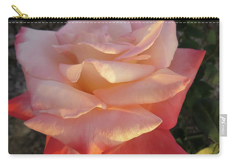 Rose Carry-all Pouch featuring the photograph White And Peach by Zina Stromberg