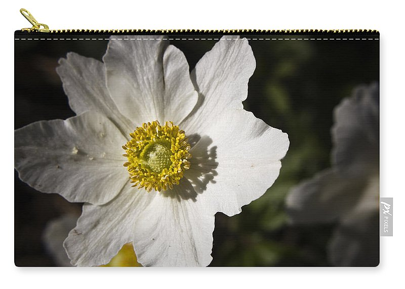 Flower Carry-all Pouch featuring the photograph White Anemone by Teresa Mucha