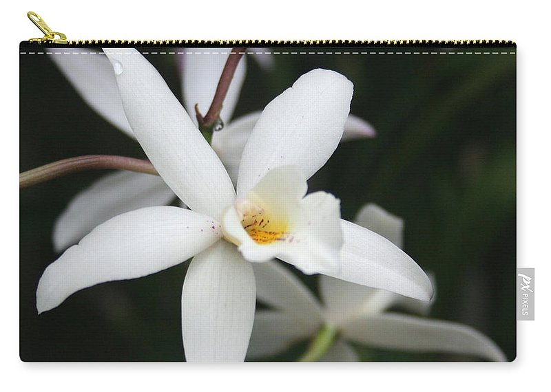 Flowers Nature White Macro Orchid Greenhouse Digital Photography Carry-all Pouch featuring the photograph White Beauty Dove by Linda Sannuti