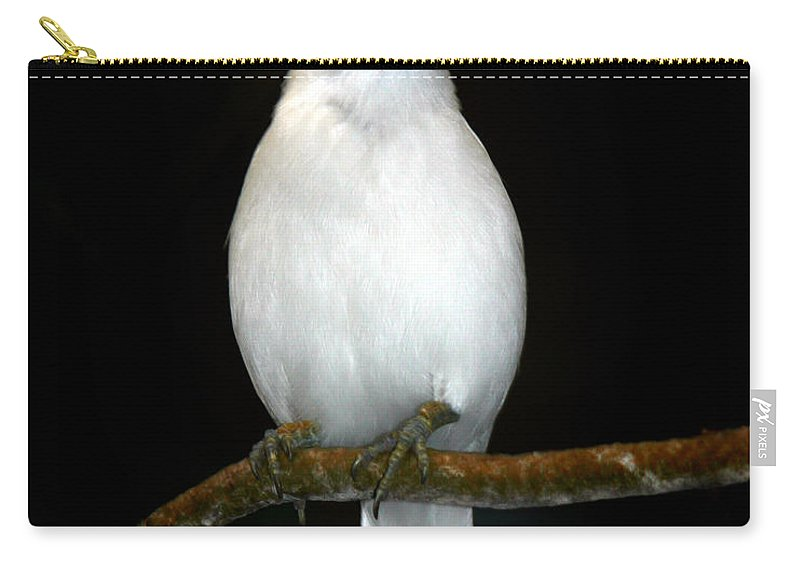 Bird Carry-all Pouch featuring the photograph White Bird by Anthony Jones
