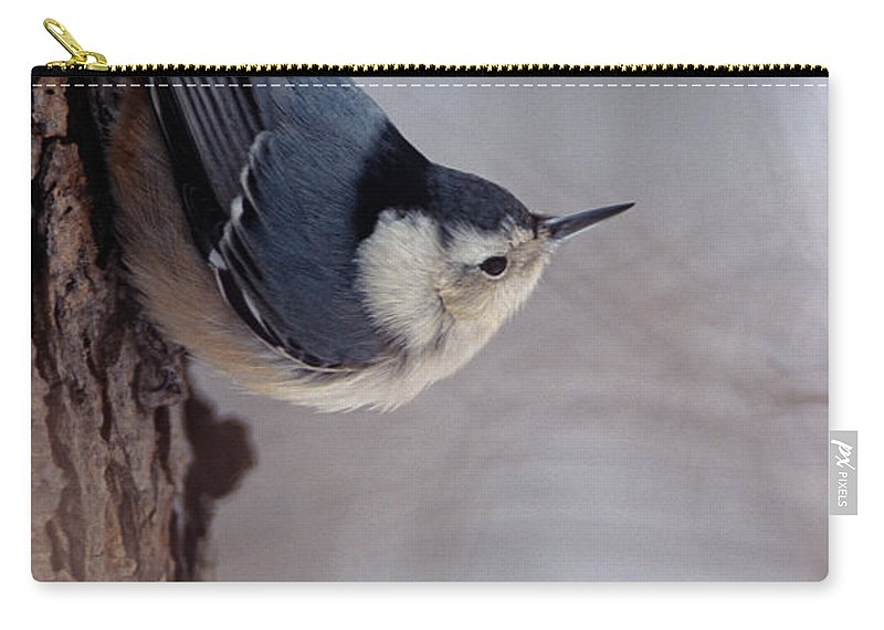 White-breasted Nuthatch Carry-all Pouch featuring the photograph White-breasted Nuthatch by John Harmon