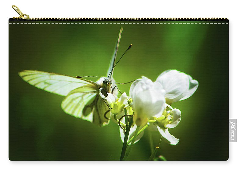 Butterfly Carry-all Pouch featuring the photograph White Butterfly by Christine Dorfer