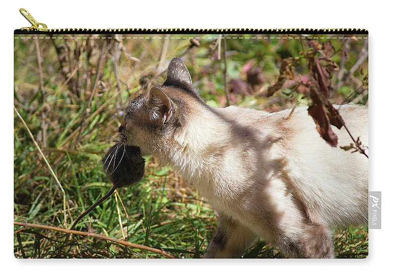White Cat Carry-all Pouch featuring the photograph White Cat On The Hunt by Seb Estrada