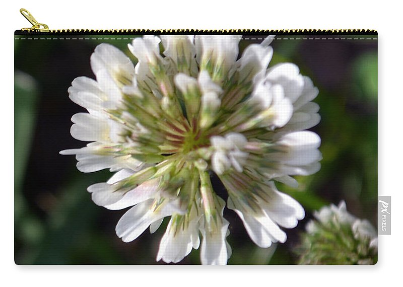 White Clover Carry-all Pouch featuring the photograph White Clover by James Pinkerton