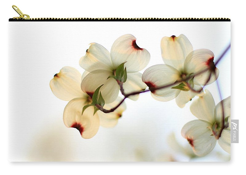 Dogwood Carry-all Pouch featuring the photograph White Dogwood Flower 2 by Andrea Kappler