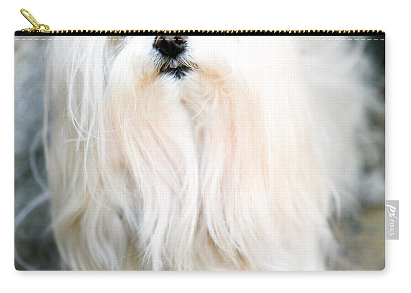 Small Carry-all Pouch featuring the photograph White Fluff by Marilyn Hunt
