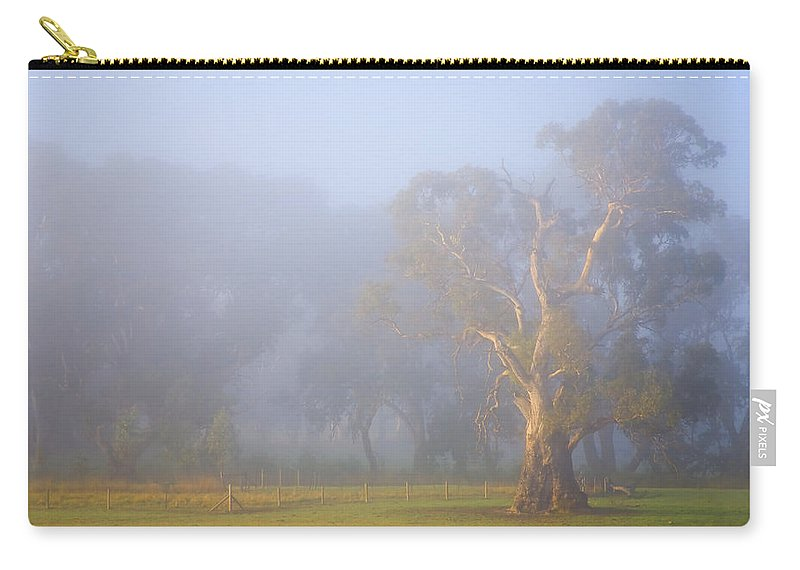 Tree Carry-all Pouch featuring the photograph White Gum Morning by Mike Dawson