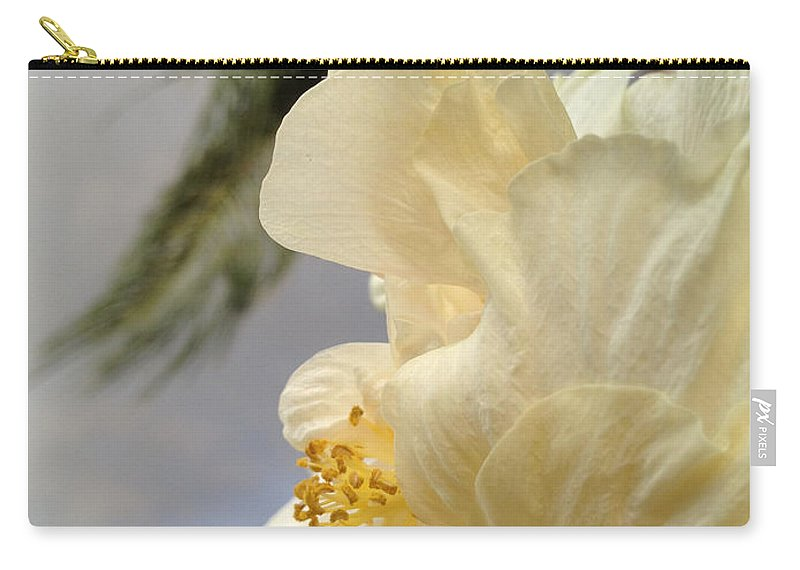 Hibiscus Carry-all Pouch featuring the photograph White Hibiscus by Clay Cofer