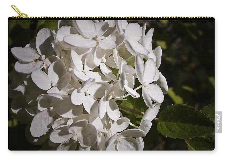 Hydrangea Carry-all Pouch featuring the photograph White Hydrangea Bloom by Teresa Mucha