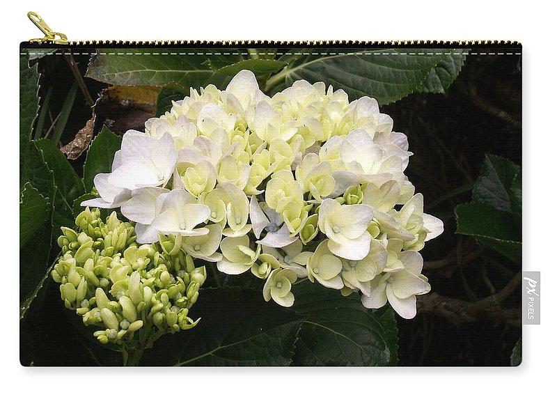 Flower Carry-all Pouch featuring the photograph White Hydrangeas by Amy Fose