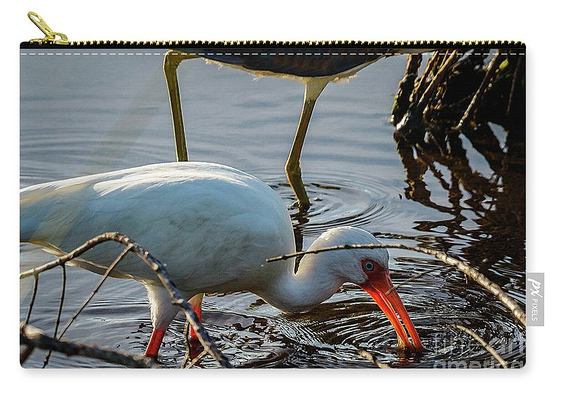 White Carry-all Pouch featuring the photograph White Ibis Eating by Les Greenwood