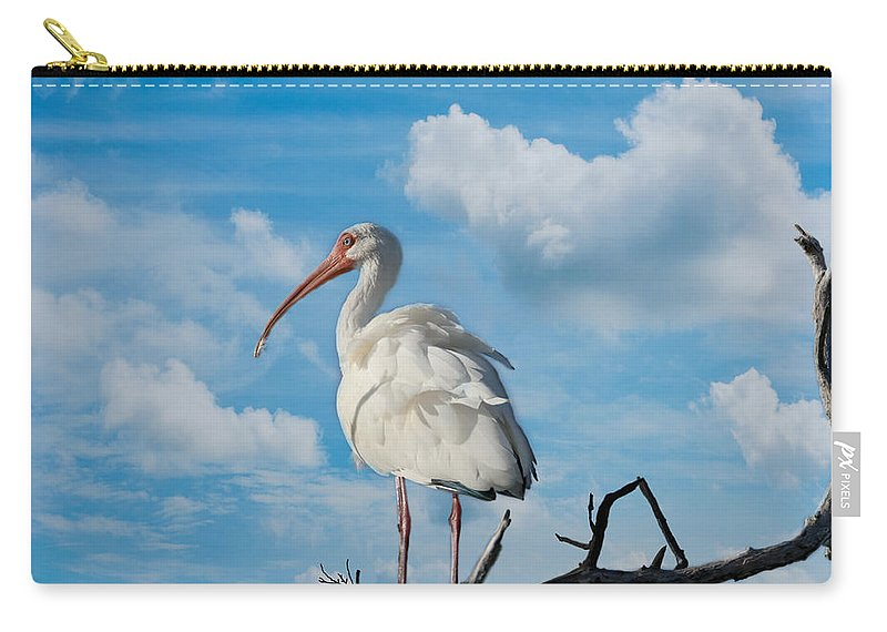 Ibis Carry-all Pouch featuring the photograph White Ibis by Kim Hojnacki