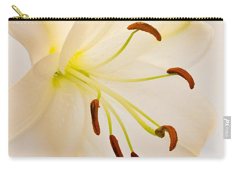 Square Carry-all Pouch featuring the photograph White Lily Square Version by Bill Swindaman