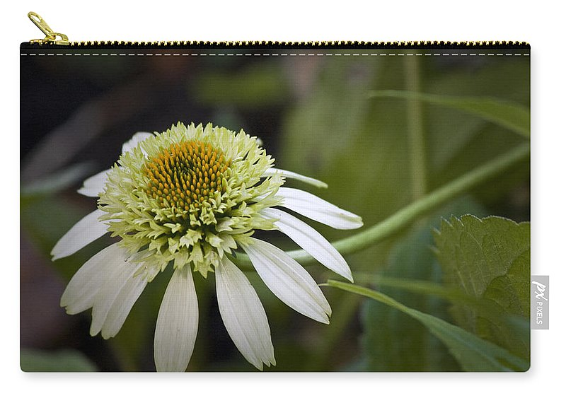 White Carry-all Pouch featuring the photograph White Milkshake Coneflower by Teresa Mucha
