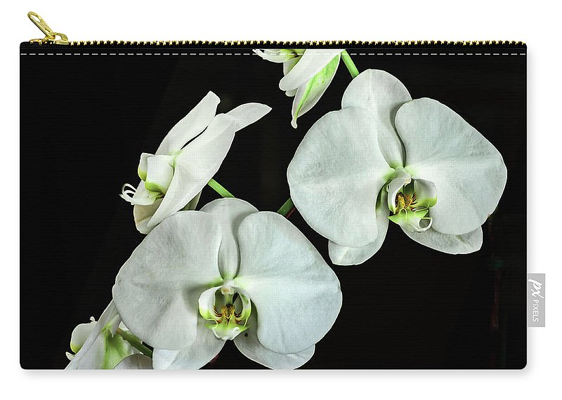 White Carry-all Pouch featuring the photograph White Orchid by Don McDaniel