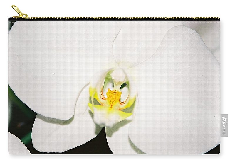 White Orchid Carry-all Pouch featuring the photograph White Orchid by Lauri Novak