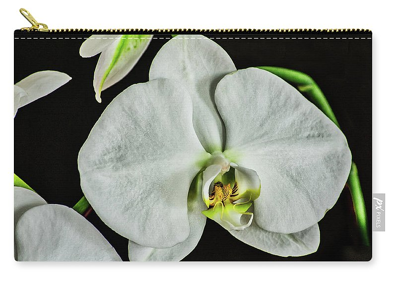 White Orchid Carry-all Pouch featuring the photograph White Orchid On Black by Don McDaniel