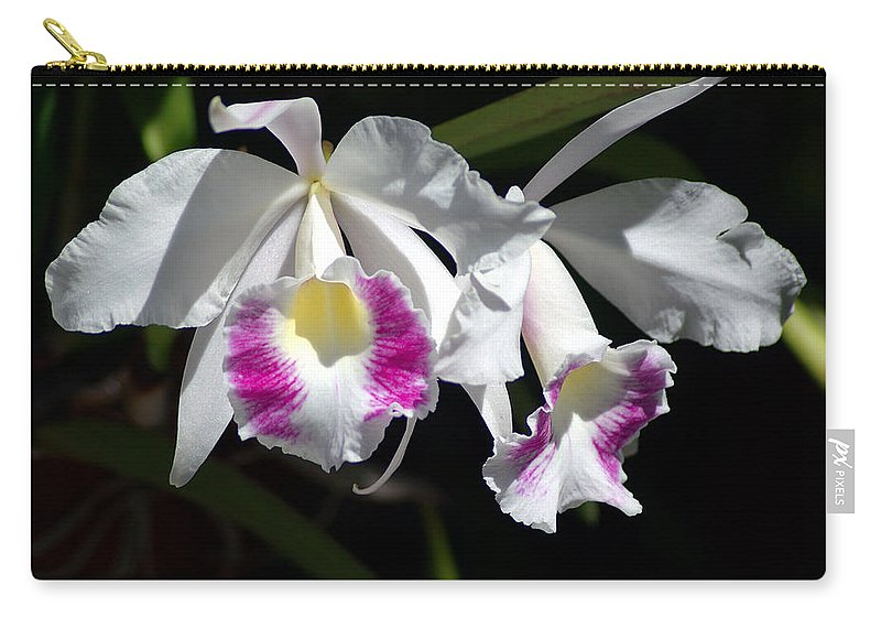 Photography Carry-all Pouch featuring the photograph White Orchids by Susanne Van Hulst
