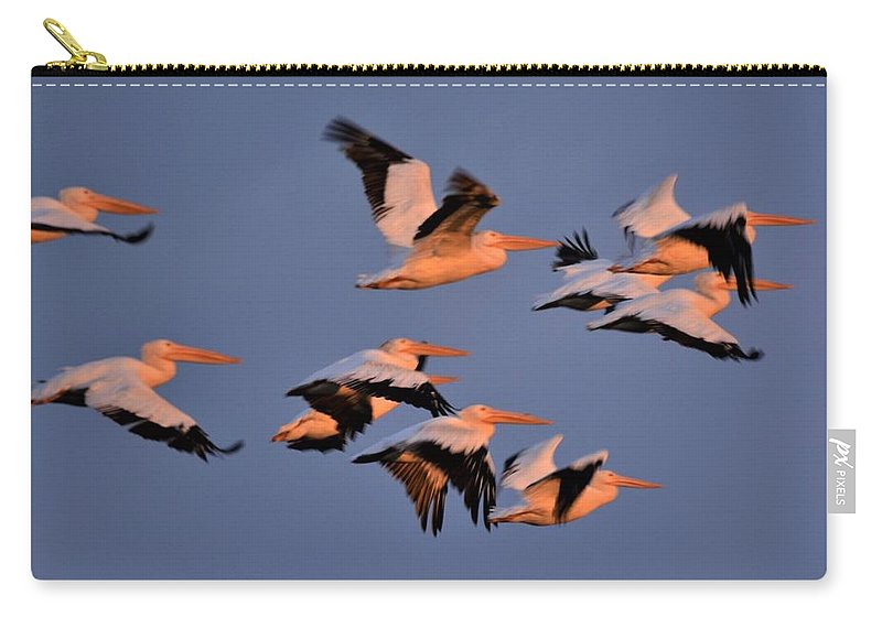 Morning Light Carry-all Pouch featuring the photograph White Pelicans by John Adams