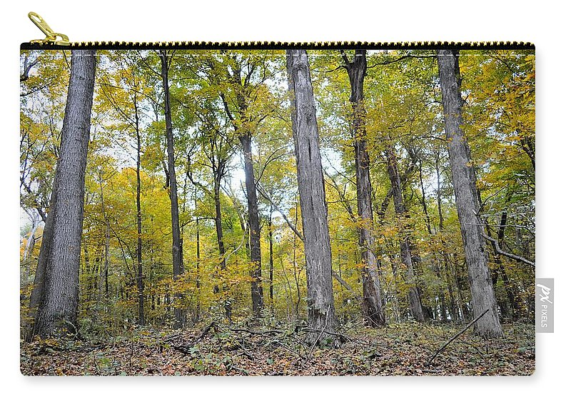 Forest Carry-all Pouch featuring the photograph White Pine Hollow by Bonfire Photography