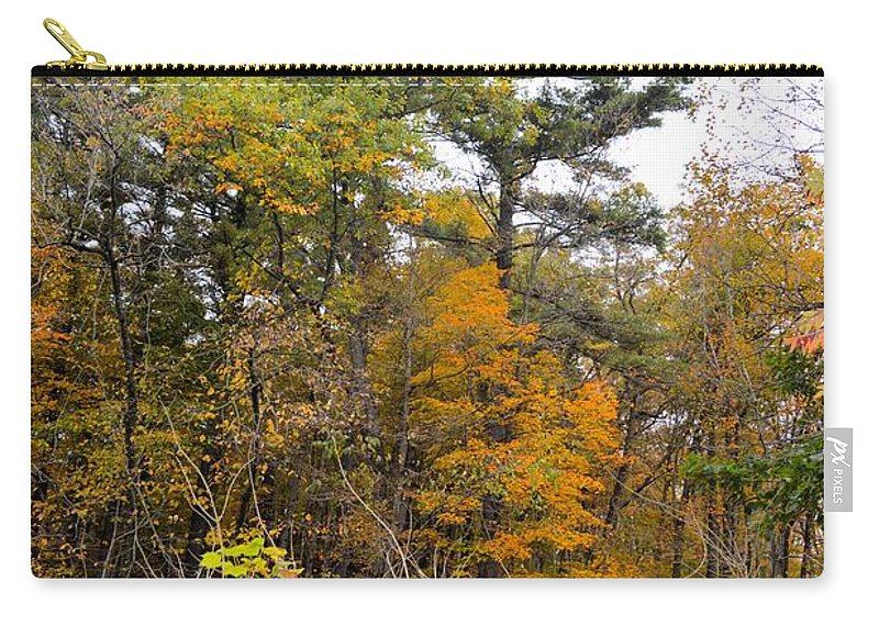Forest Carry-all Pouch featuring the photograph White Pine Hollow State Forest by Bonfire Photography
