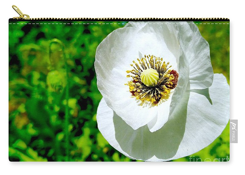Poppies Carry-all Pouch featuring the photograph White Poppy by Mioara Andritoiu