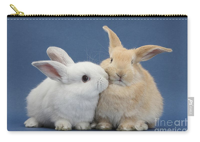 Nature Carry-all Pouch featuring the photograph White Rabbit And Sandy Rabbit by Mark Taylor