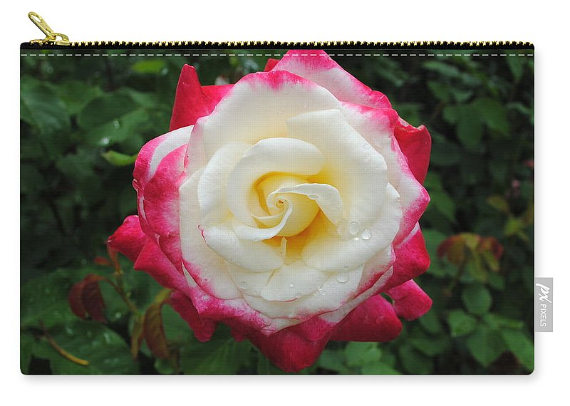 White Carry-all Pouch featuring the photograph White Red Rose by Jost Houk