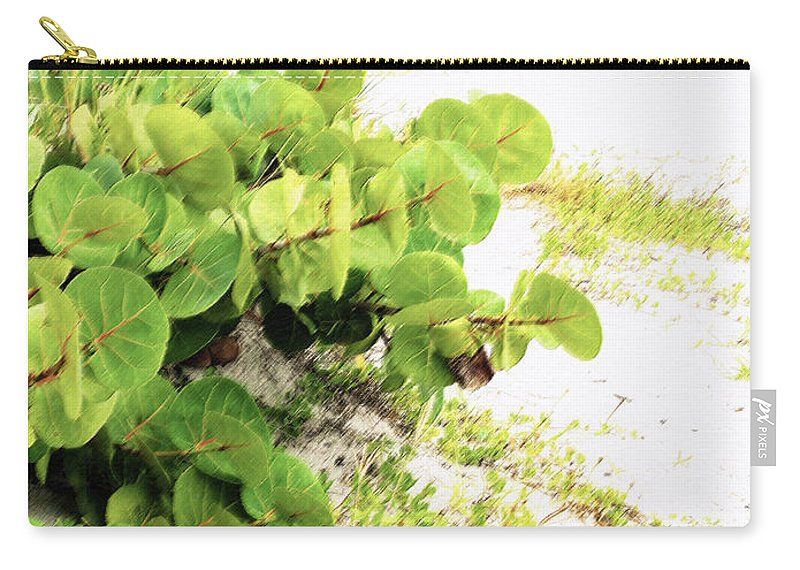 Florida Carry-all Pouch featuring the photograph White Sand Beach by Ian MacDonald