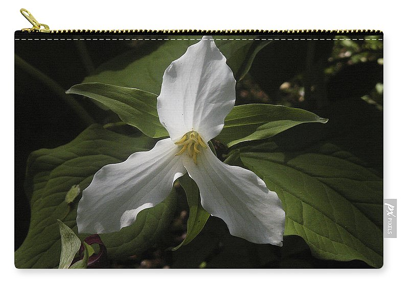 Flower Carry-all Pouch featuring the photograph White Trillium by Nancy Griswold