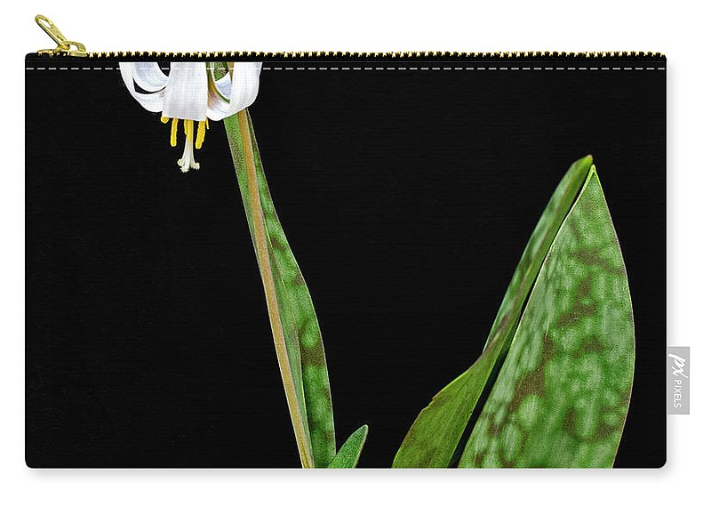 White Carry-all Pouch featuring the photograph White Trout Lily by Emma England