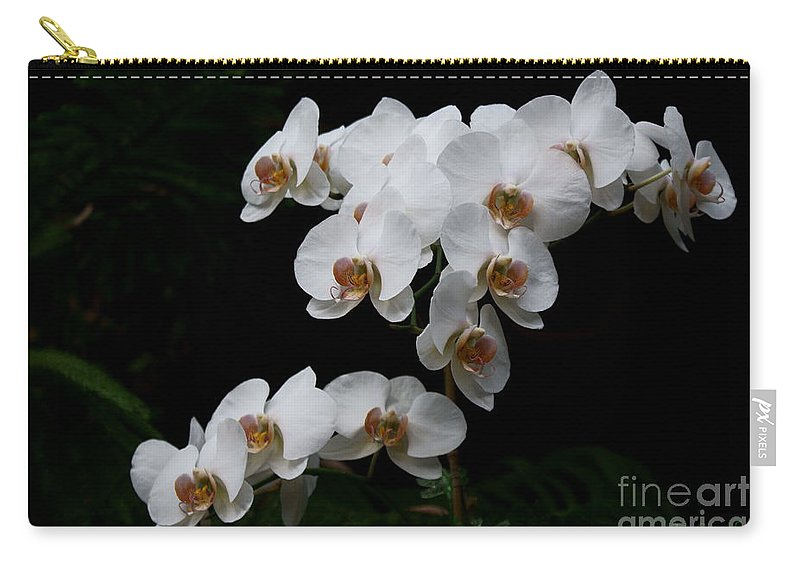 Phylanopsis Orchid Carry-all Pouch featuring the photograph White Velvet by Joanne Smoley