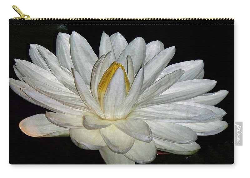 White Carry-all Pouch featuring the painting White Water Lily by Eric Schiabor
