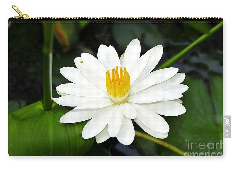 White Carry-all Pouch featuring the photograph White Wonder by David Lee Thompson