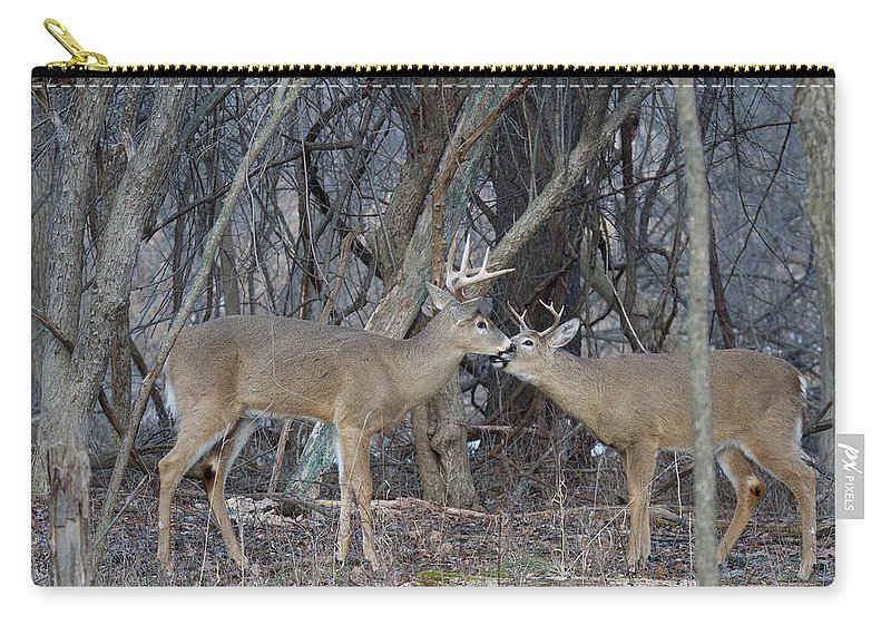 Deer Carry-all Pouch featuring the photograph Whitetail Bucks 5795 by Michael Peychich